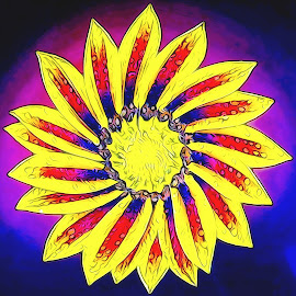 Flower Twirle by Dave Walters - Digital Art Abstract ( macro, nature, colors, artsey, flower )