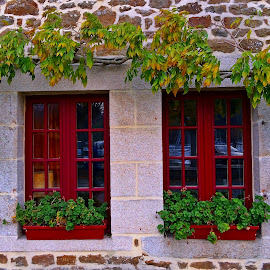 House in Brittany by Dobrin Anca - Buildings & Architecture Homes ( window, green, funny, brittany, house )