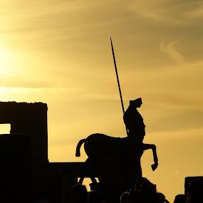 pompei centaur by Enry Ci - Buildings & Architecture Statues & Monuments ( centaur, statues, pompei, backlight, silhouette, monument, ancient, architecture, story )
