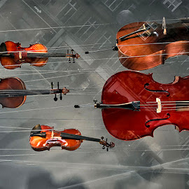 by Abdul Rehman - Artistic Objects Musical Instruments