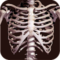 Osseous System in 3D (Anatomy) APK Descargar