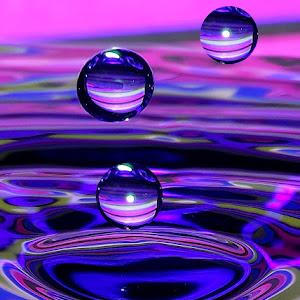 drops Jan 6 2014150.jpg