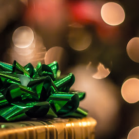 Holiday Season by Hunter Bryant - Novices Only Objects & Still Life ( holiday, present, december, bow, bokeh )