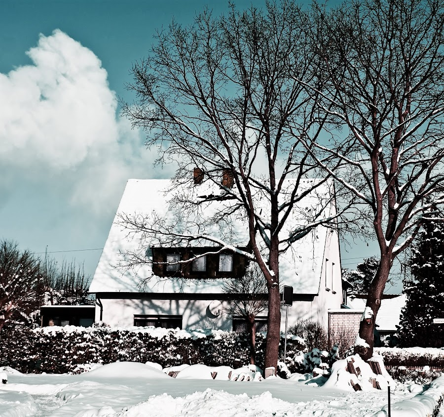 Covered in snow by Delia Galhotra - Landscapes Weather ( pwcwinter, digiphotography, winter, snow, trees, house )