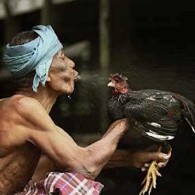 bathing rooster by R'zlley TheShoots - News & Events World Events ( people.human interest )