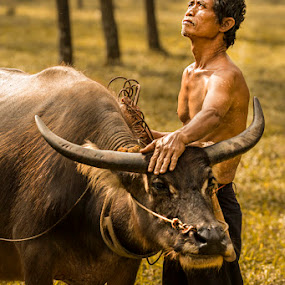 Domador de Búfalo 1 by Suardhito Pratama - People Portraits of Men