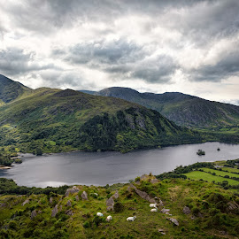 Healy Pass by Jim Hamel - Landscapes Travel ( mountain, ireland, healy, lake, kerry, pass )