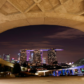 Marina Bay SIngapore from Marina Barage by Welly Agus - City,  Street & Park  Vistas