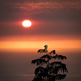 Coastal Sunset by Joseph Vittek - Landscapes Sunsets & Sunrises ( clouds, sunset )