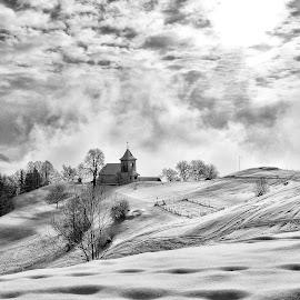 Zimska pravljica by Bojan Kolman - Black & White Landscapes (  )