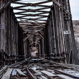 Historic Bridges by Sylvia Meier - Buildings & Architecture Bridges & Suspended Structures ( bridge, historic )