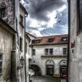 The Way To The Castle by Adam Lang - City,  Street & Park  Street Scenes ( czech, castle, steps, prague, alley )