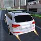 X6 Q7 Amg Simulator