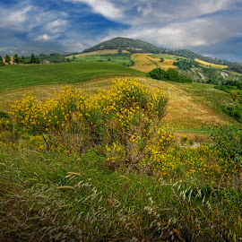 Tuscany by Khaled Ibrahim - Landscapes Prairies, Meadows & Fields