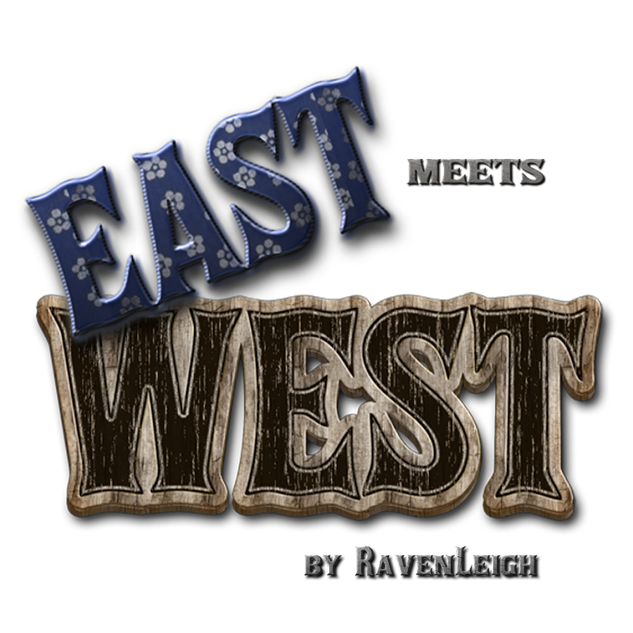 East Meets West Icon Theme Screenshot 4