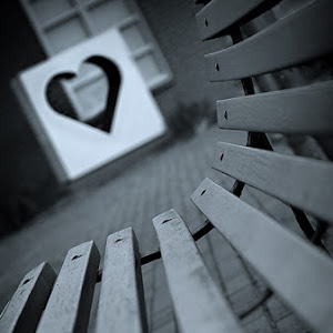 srdce-a-lavice-04012012_5107b.jpg