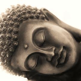 Buddha Series 4 by Sunil Abraham - Artistic Objects Other Objects ( shut eyes, brown, meditation, sleeping, buddha, Buddhism )