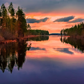 Presence by Ewa Nilsson - Landscapes Waterscapes ( water, reflection, lapland, trees, forest, light )