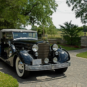 by Deb Dicker - Transportation Automobiles ( car, cadillac, antique,  )