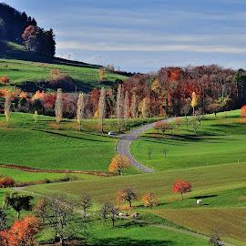 Autumn by Radisa Miljkovic - Landscapes Travel