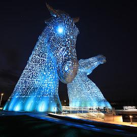 The Kelpies by Michael Kirk - Buildings & Architecture Statues & Monuments ( colour, scotland, kelpies, night, light )