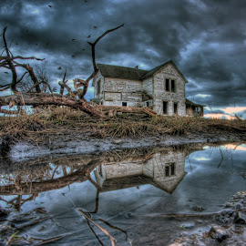 Melted Snow by Eric Demattos - Buildings & Architecture Decaying & Abandoned ( farm, reflection, eric demattos, abandoned house, branches, abandoned )