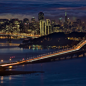 San Francisco Skyline by Terry Scussel - Buildings & Architecture Bridges & Suspended Structures ( pwcskylines, night, lights )