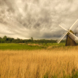 by Chris Williams - Landscapes Prairies, Meadows & Fields