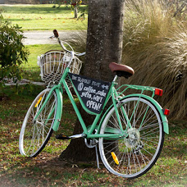by Shirley Warner - Transportation Bicycles