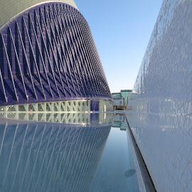 Agora of Calatrava, Valencia by Luis Felipe Moreno Vázquez - City,  Street & Park  Street Scenes ( water, buildings, reflections, architecture, valencia, spain, calatrava )