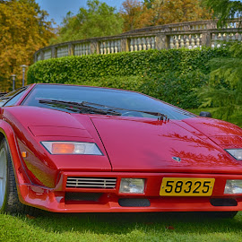 Red Beast by Marco Bertamé - Transportation Automobiles ( car, sportscar, countach, italian, vintage, numer, green, lp, yellow, lamborghini, 3, 5000s, 2, 1983, number plate, red, metal, 5, anno, aerodynamic, 8, oldtimer )