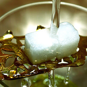 Absinthe Anticipation by John Ogden - Food & Drink Alcohol & Drinks ( water, sugar cubes, glass, spoon, absinthe )