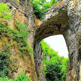 Natural Bridge by Travis Houston - Landscapes Caves & Formations