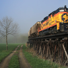 Foggy Morning by Sharon Horn - Transportation Trains ( tressel, tree, foggy morning, fog, dirt road, chessie engine, train, dirt lane, yellow train, chessie train, lane )