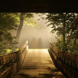 Shadows in the dark by Daniel Scott Jr - City,  Street & Park  Neighborhoods ( foot bridge, fog, ghosts, dark, summer, night time, couple, light in the distance, long exposure, bridge, shadows )