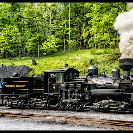 Loading Coal by James Eickman - Transportation Trains