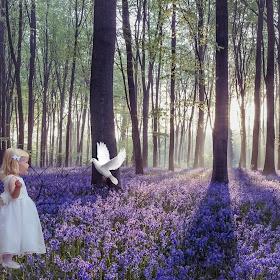 girl and dove.jpg