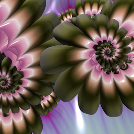 Spiral 42 by Cassy 67 - Illustration Abstract & Patterns ( digital, love, harmony, flowers, abstract art, spiral, abstract, fractals, digital art, flower, classic, modern, light, fractal, energy )