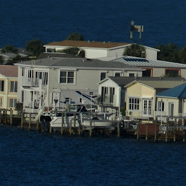 Nettles Island by Matthew Beziat - Landscapes Travel ( sunshine state, treasure coast, nettles island, florida, indian river lagoon, indian river, hutchinson island,  )