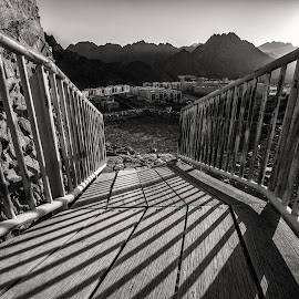 The Bridge by Ebtesam Elias - Black & White Objects & Still Life