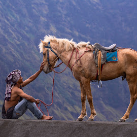 The Horse Man by Rahmad Hidayat - People Professional People ( the horse man, tengger, indonesia, horse, east java, bromo, mt. bromo, man )