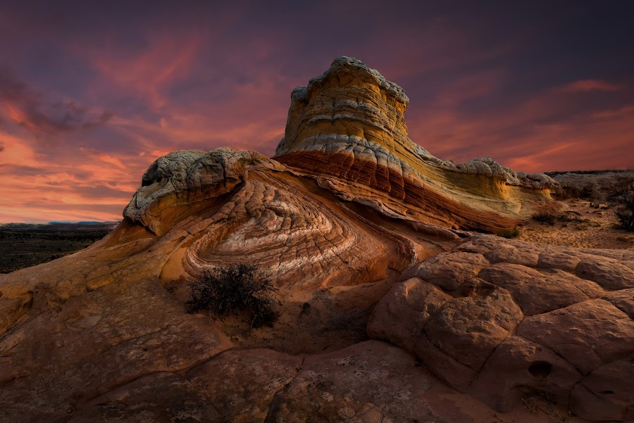 by Ryan Smith - Landscapes Deserts