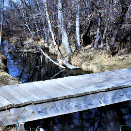 Old foot bridge color by Bruce Newman - Landscapes Prairies, Meadows & Fields