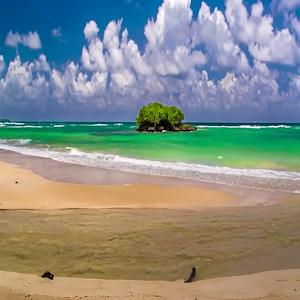 Cover art Beach Sea 8 Live Wallpaper