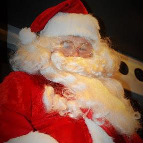 by Tricia Ellis - Public Holidays Christmas ( santa, chr,  )
