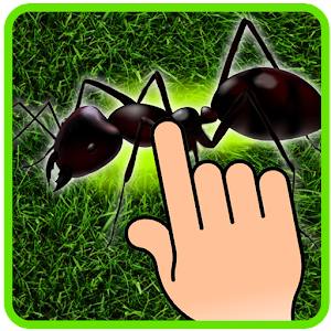 Ant Smasher - Kids Games