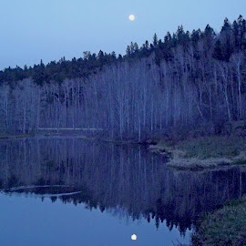 Moonlight Reflections by Vicki Strickland - Novices Only Landscapes ( black hills wyo, beautiful, reflections, dusk, moonlight )