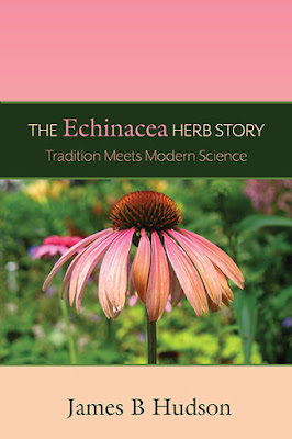 The Echinacea Herb Story: Tradition Meets Modern Science