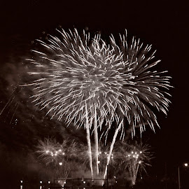 by Thomas Lane - Public Holidays July 4th