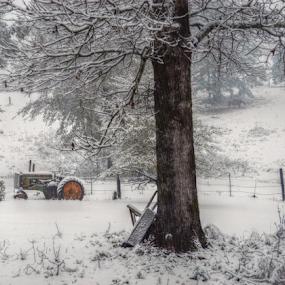 Winter Wonder Land by Jeannie Love - Landscapes Prairies, Meadows & Fields ( farm, winter, snow, weather, landscape )